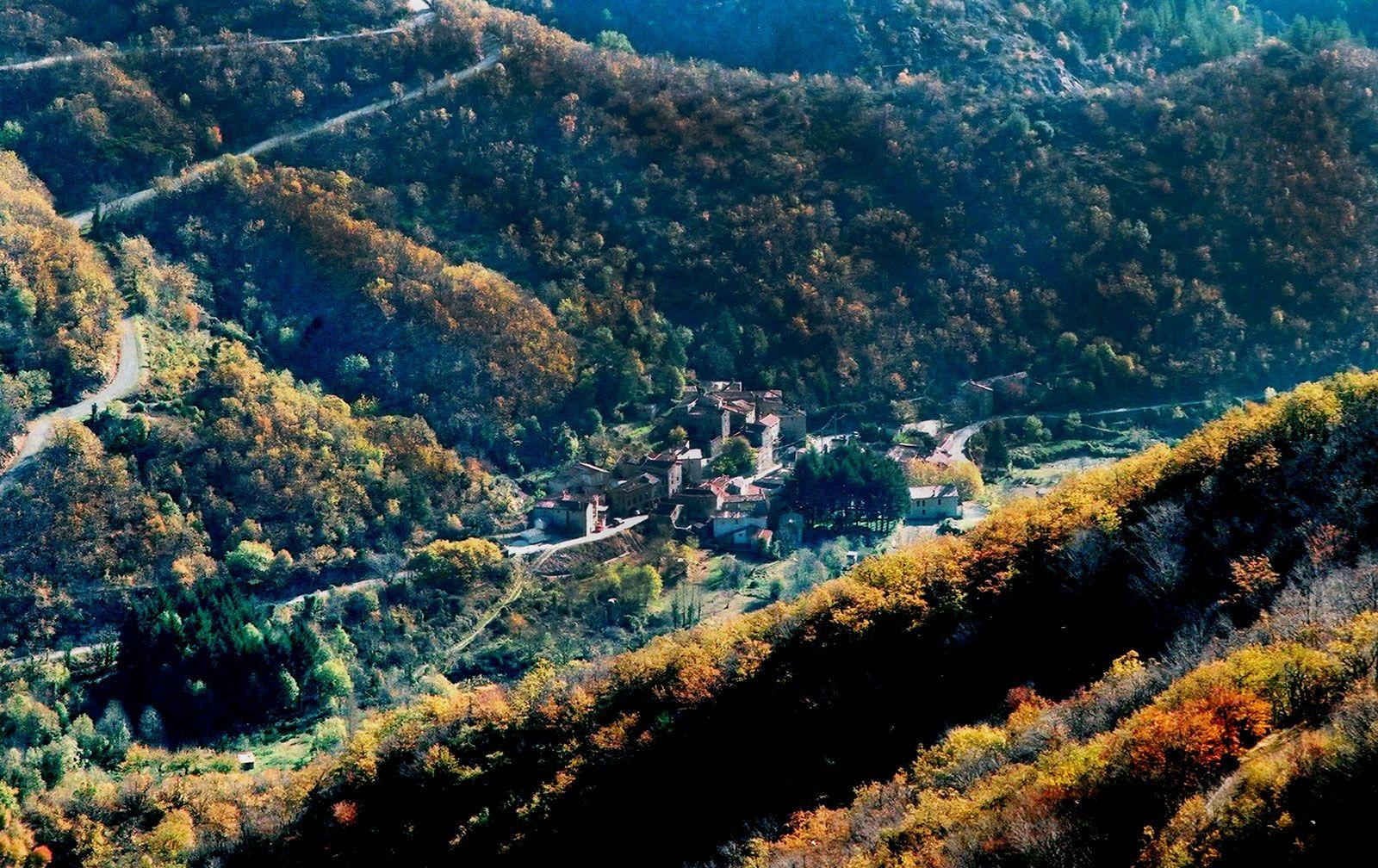 Arphy-automne